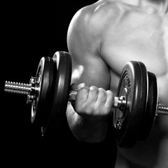 guide-musculation
