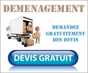 devis-demenagement-militaire